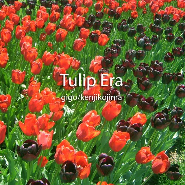 Tulip Era
