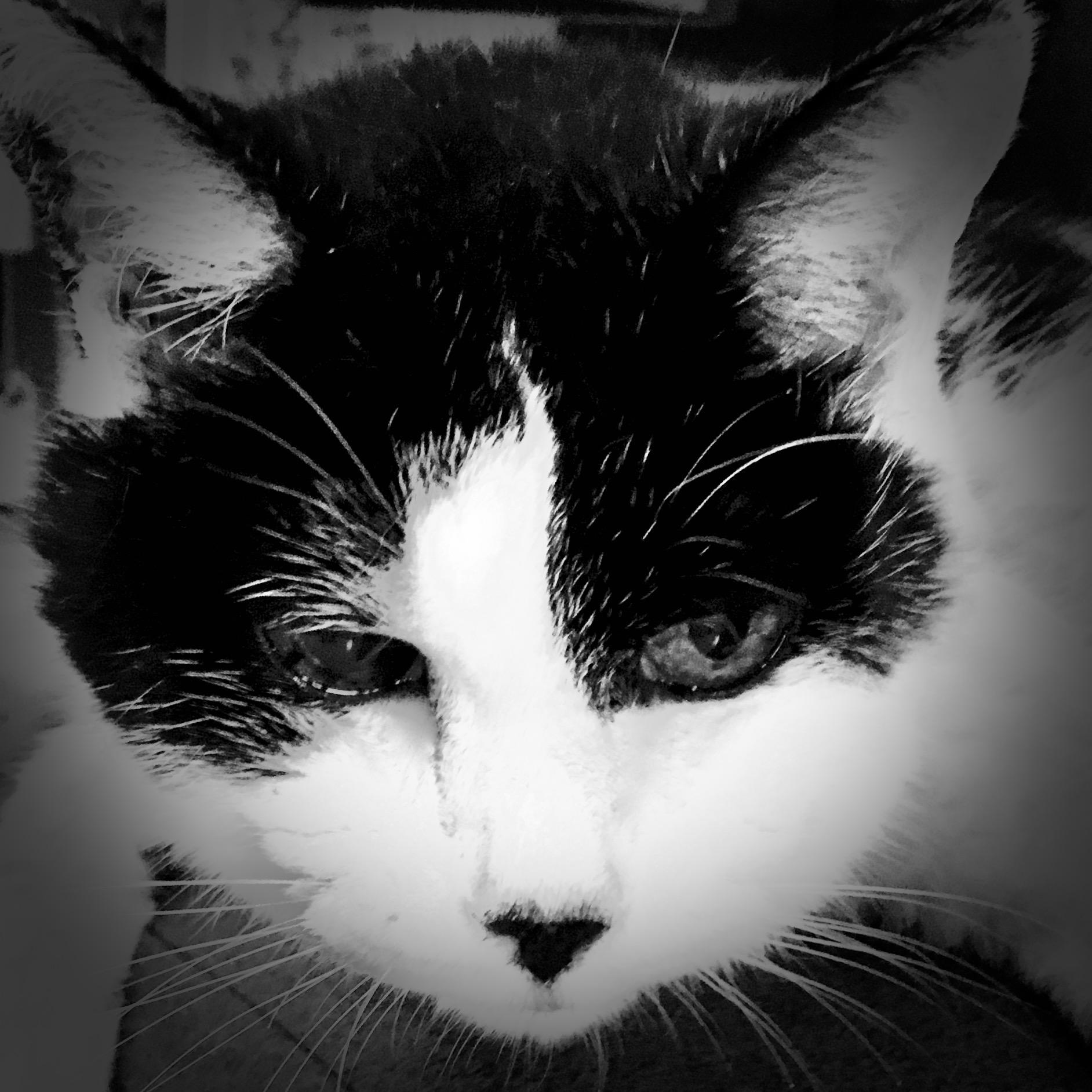 天国のサマ〜タイム