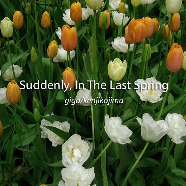 Suddenly, In The last Spring