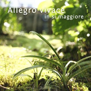 Allegro vivace, in si maggiore