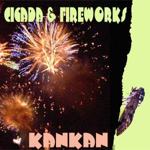 Cicada, Bear & Fireworks