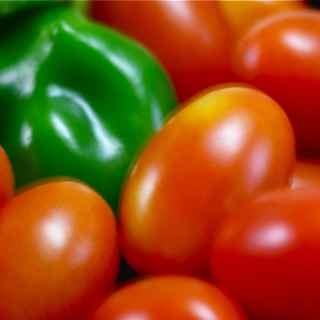 Sweet Tomato Blues