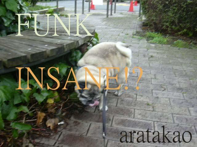 FUNK INSANE