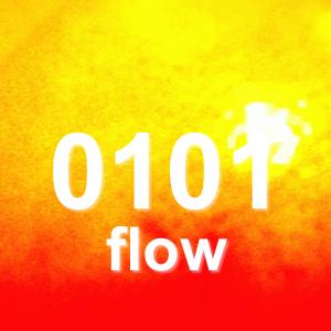 0101 flow