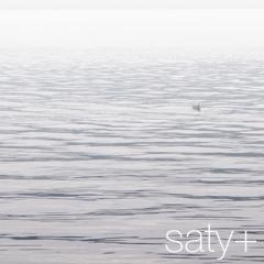 Water birds - (100404-5)