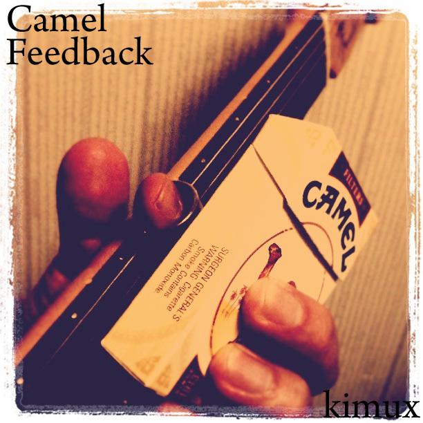 Camel Feedback