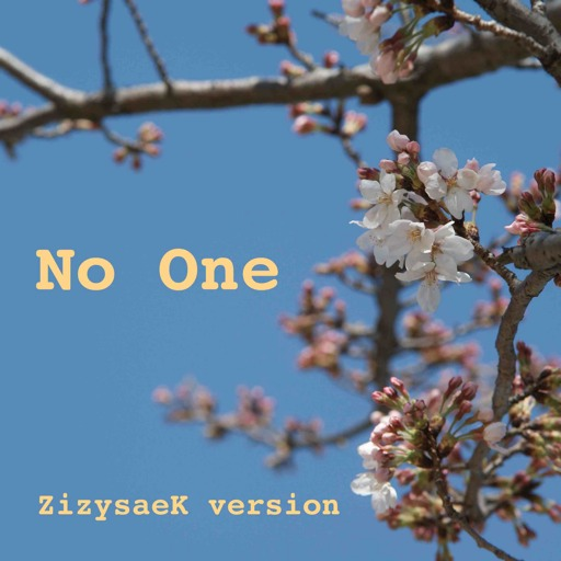 No one - ZizysaeK version