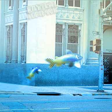 Catfish Jumpin