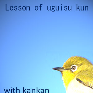 Lesson of uguisu kun