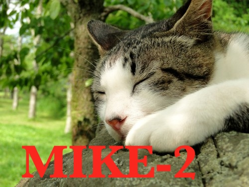 MIKE 2