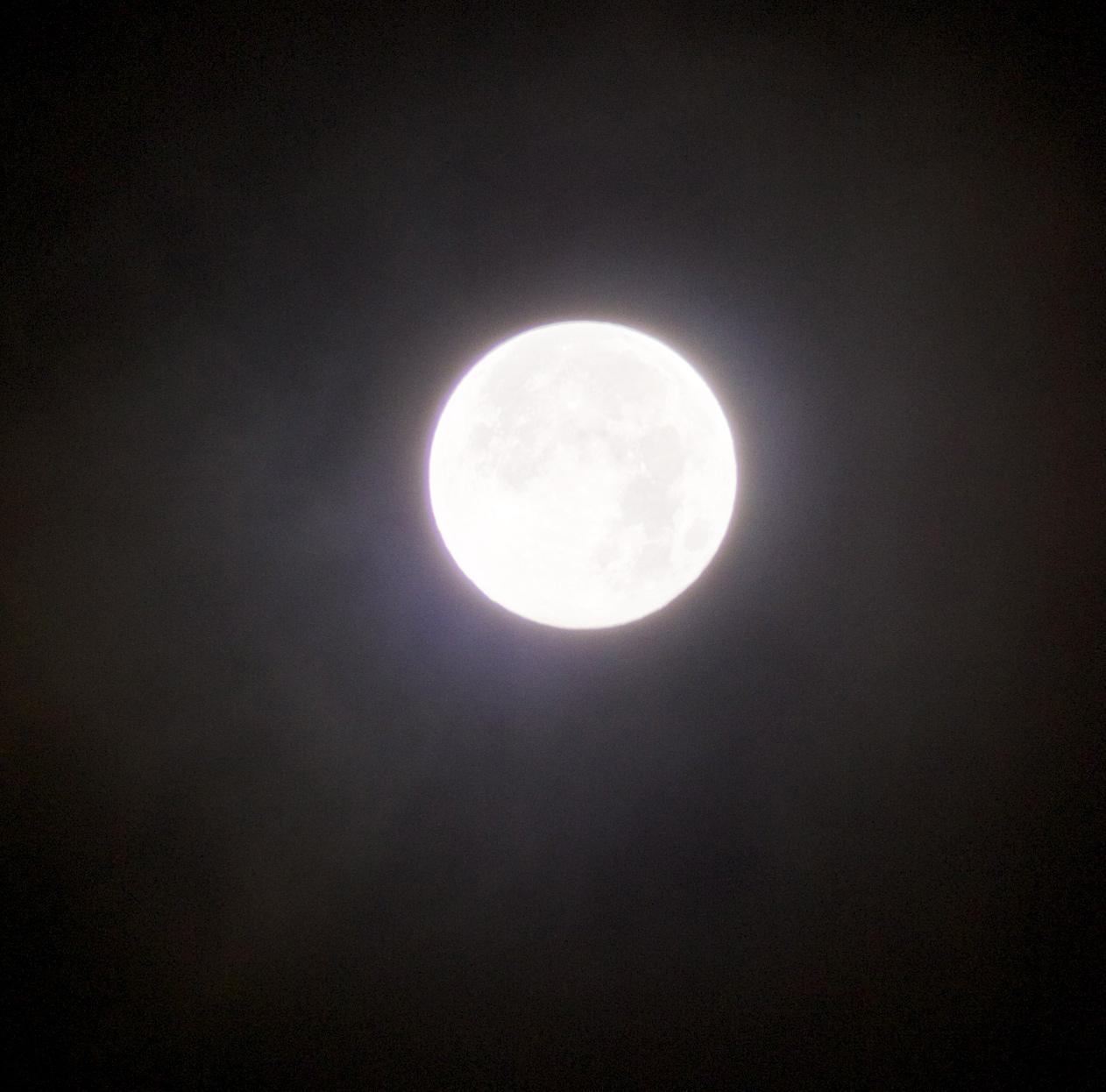 十五夜 2012