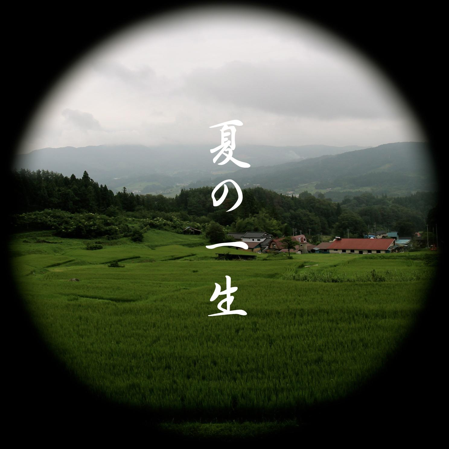 夏の一生(2014)
