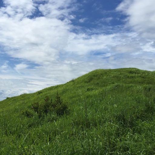 地球の緑の丘 inst version