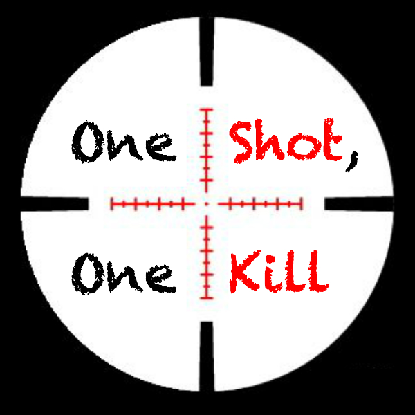 One Shot,One Kill