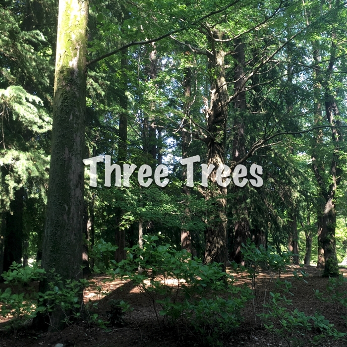 Three Trees.(2018 Piano Edition)