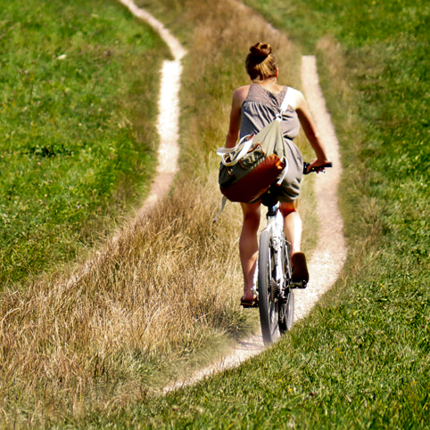 君と自転車(備忘録版)