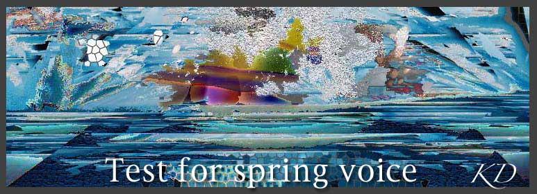 Test for spring voice(完全版)