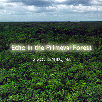 Echo in the Primeval Forest