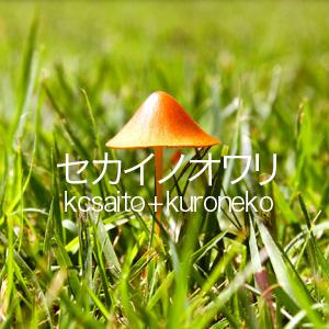 セカイノオワリ〜ひなた2(kcsaito+kuroneko)