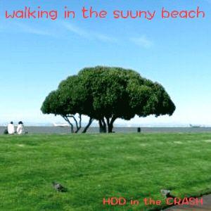 walking in the sunny beach
