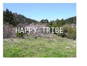 Happy tribe (in fairyland)