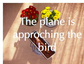 The plane is approching the bird