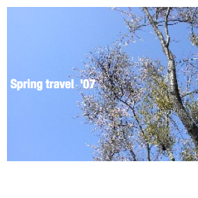 Spring travel'07