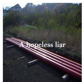 A hopeless liar (ウナズクノニキモチハイラナイ)