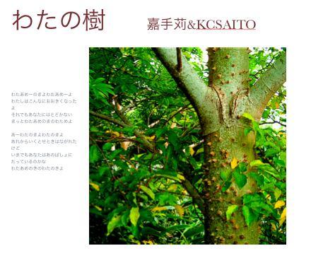 わたの樹(改。ケー氏齋藤による。) かでかるみばとケー氏齋藤